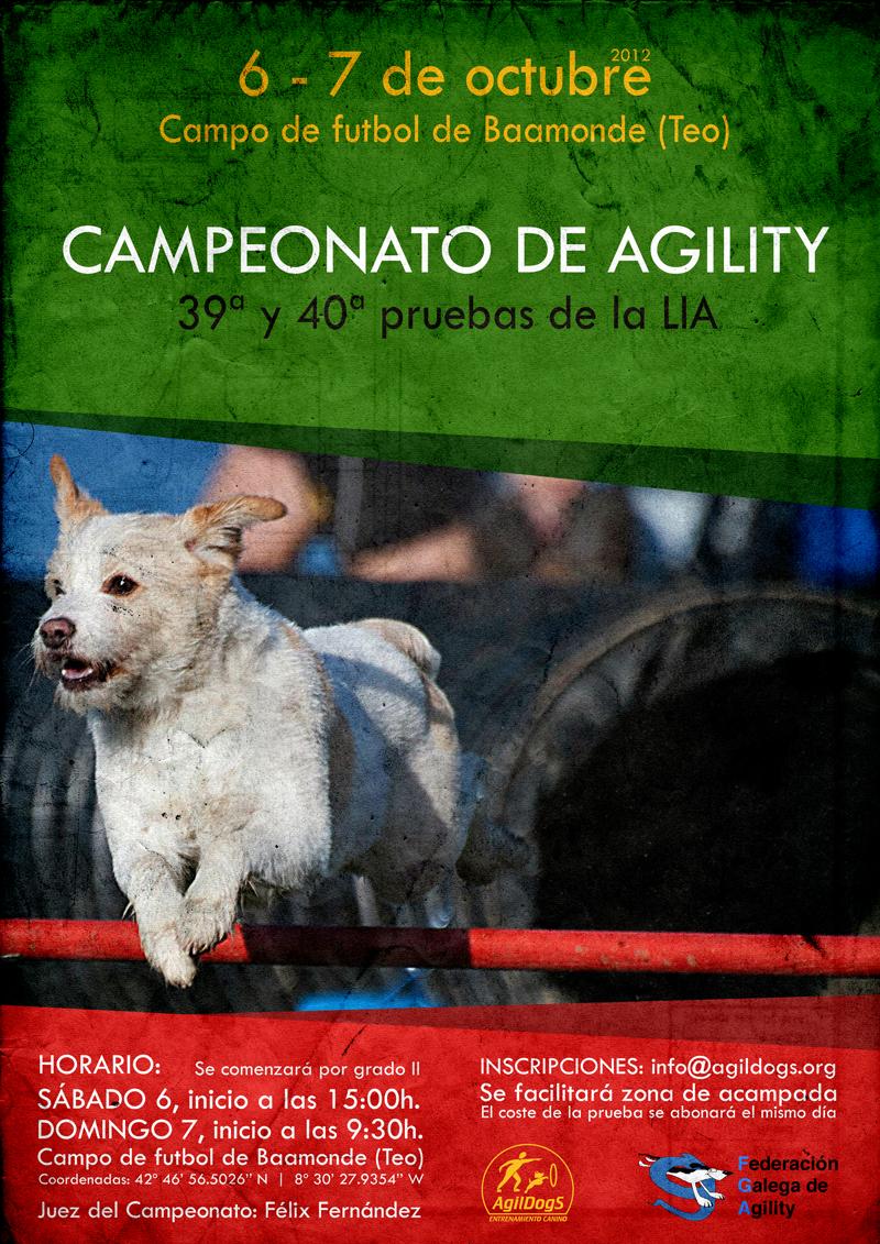 Campeonato de agility (Teo 2012)