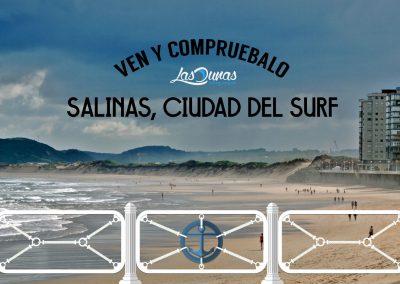 ven_salinas